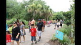 Gallery: Winter In July at the Jax Zoo & Gardens - (10/10)