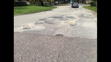 Gallery: Potholes in St. Augustine - (1/5)