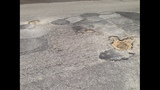 Gallery: Potholes in St. Augustine - (3/5)
