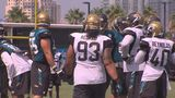 Gallery: Jaguars players fight at training camp - (1/10)
