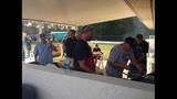 Gallery: Jaguars training camp at Bartram… - (2/5)