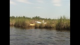 Crews return to Yulee plane crash site - (3/4)
