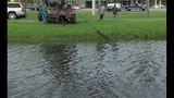 Gallery: Car pulled from St. Augustine pond - (4/15)