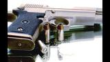 Gun_5987091