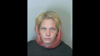 Putnam County deputies arrest suspect in theft, pawning