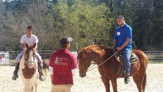 Haven Horse Ranch program helping troubled teens steer away from life of crime