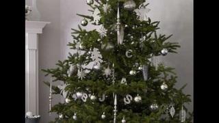 Information on proper Christmas tree disposal for Jacksonville residents