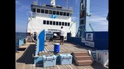 OCEARCH began its search Wednesday for great white sharks off Jacksonville's coast. Action News Jax had the only news crew on board the first day of the expedition.