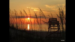 Fernandina Beach in the running for Coastal Living