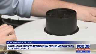 New traps being used in the Jacksonville area to fight Zika