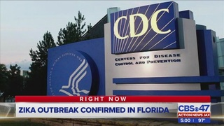 Zika outbreak confirmed in Florida