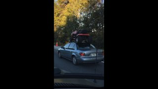 Photo: Florida driver straps lawn mower to car roof, drives on I-10