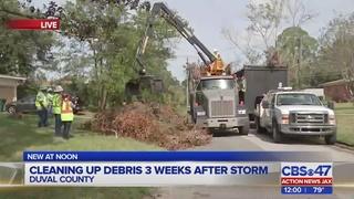 Storm debris clean-up
