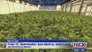Push to temporarily ban medical marijuana