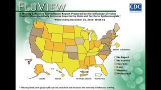 Weekly U.S. Map: Influenza Summary Update