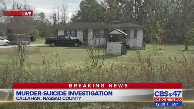 Neighbors shocked after second murder-suicide in Nassau ...