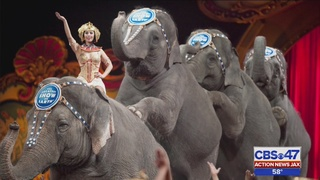 Jacksonville citizens have mixed reactions to Ringling Bros. announcement