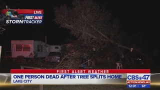 Report: 1 dead after tree falls on Lake City home during severe storms