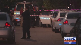 Homeowner shoots intruder