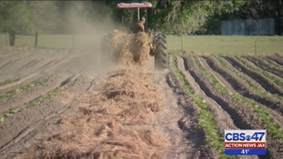 Baker County farmers trying to protect crops from freeze