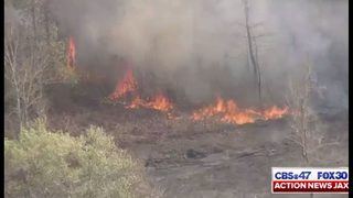 Photos: 150-acre wildfire in Brantley County