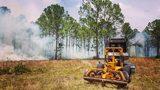 Photos: Florida Forest Service viewer photos - (10/13)