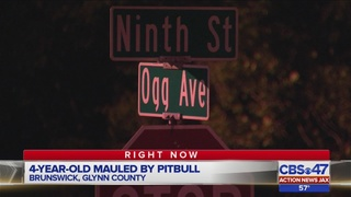 4-year-old mauled by pitbull