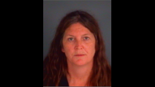 Middleburg woman arrested for