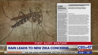 Rain leads to new Zika concerns