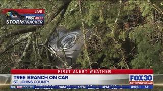 St. Johns County storm damage after Tornado Warning
