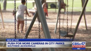 Push for more cameras in city parks