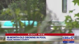 Deputies: Yulee toddler left house through pet door, drowned in pool