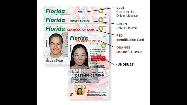 Lot To Less Governor Cost Driver's Wjax-tv A Florida Wants Licenses