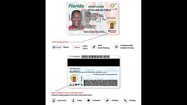 Drivers License Lookup National Motor Vehicle License ...