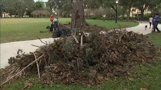 Volunteers help clean up Memorial Park