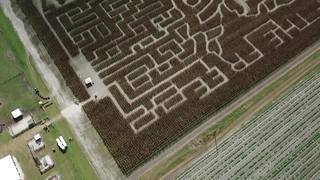 """Drone video: Corn maze says """"Land of the Free"""""""