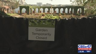 Cummer Museum reopens part of gardens 2 months after hurricane damage