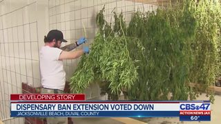 Medical marijuana dispensary ban extension voted down in Jacksonville Beach