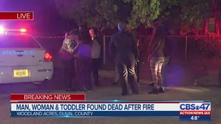 Man, woman and toddler found dead