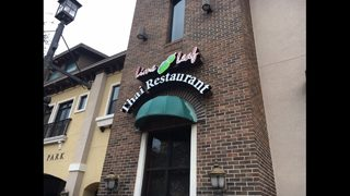 Lime Leaf Thai Restaurant in Jacksonville closed for rodent droppings, live roaches