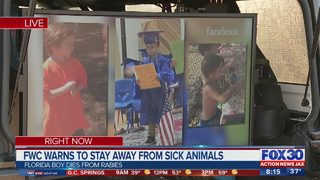 FWC warns to stay away from sick animals after boy dies from bat scratch