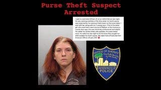 Jacksonville police: Woman suspected in 4 purse-snatchings arrested