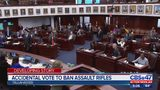 Accidental vote to ban assault rifles
