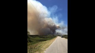 Photos: Prescribed burn in St. Johns County