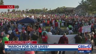 Thousands in Jacksonville area join nationwide movement calling for stricter gun laws