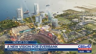 Jacksonville Jaguars owner Shad Khan: Development