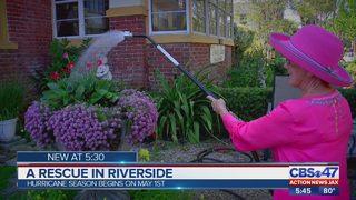 A rescue in Riverside