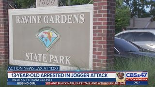 13-year-old arrested in jogger attack