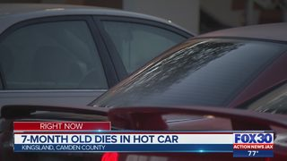 Police: 7-month-old dies in hot car in Camden County