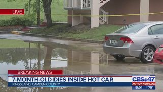 Deputies: 7-month-old dies after being left in hot car in Camden County